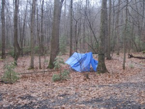Tarps draped over a hammock in the woods.